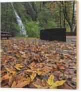 Fall Foliage At Horsetail Falls Wood Print