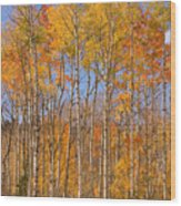 Fall Foliage Color Vertical Image Wood Print