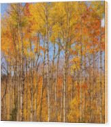 Fall Foliage Color Vertical Image Orton Wood Print