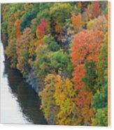 Fall Foliage In Hudson River 1 Wood Print