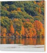 Fall Foliage In Hudson River 14 Wood Print