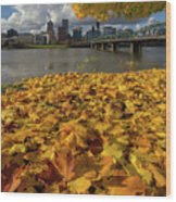 Fall Foliage In Portland Oregon City Wood Print