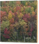 Fall Foliage In The Adirondack Mountains - New York Wood Print by Brendan Reals