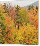 Fall Foliage In The Mountains Wood Print