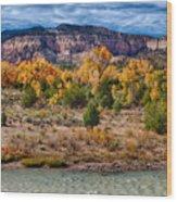 Fall Foliage Near Ghost Ranch Wood Print
