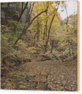 Fall Foliage Number 57 Wood Print