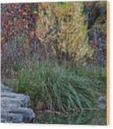 Fall Foliage Reflections At Lost Maples Wood Print