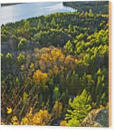 Fall Forest And Lake Top View Wood Print
