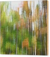 Fall Forest Colors Wood Print