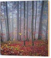 Fall Forest In Fog Wood Print