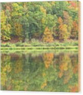 Fall Forest Reflection Wood Print