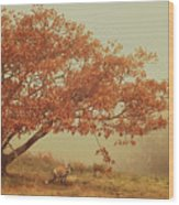 Fall Fox Wood Print
