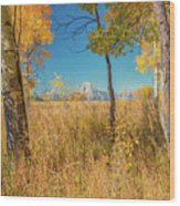 Fall From Oxbow Bend In Grand Tetons Wood Print