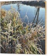 Fall Frost On Grasses Along Nippersink Creek Wood Print