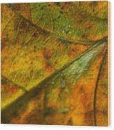 Fall Fusion Wood Print