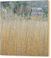 Fall Grass Wood Print