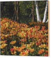 Fall Hike Wood Print