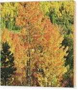 Fall Hillsides Above Dillon Reservoir Wood Print