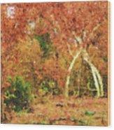 Fall Impression Wood Print