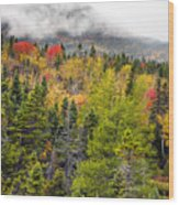 Fall In Baxter State Park Maine Wood Print