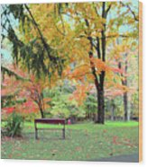 Fall In Brown County Wood Print
