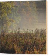 Fall In Cades Cove Wood Print
