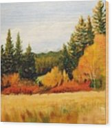 Fall In Chattaroy Wood Print