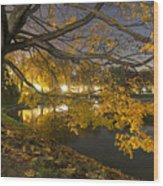 Fall In Dresden Wood Print