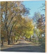 Fall In East Texas Wood Print