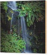 Fall In Eden Wood Print