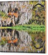 Fall In Florida Wood Print