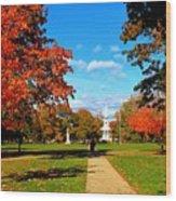 Fall In Guilford Wood Print