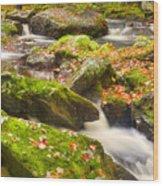 Fall In Henniker Wood Print
