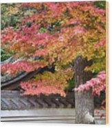 Fall In Japan Wood Print