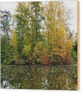 Fall In Kaloya Park 10 Wood Print