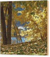 Fall In Kaloya Park 3 Wood Print