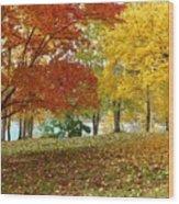 Fall In Kaloya Park 9 Wood Print