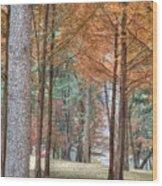 Fall In Korea Wood Print