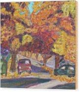 Fall In Santa Clara Wood Print
