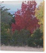 Fall In Santa Fe Wood Print