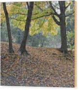 Fall In Stony Brook Wood Print