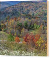Fall In Tennessee Wood Print