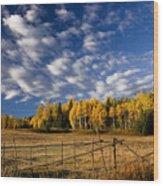 Fall In The Cariboo Wood Print