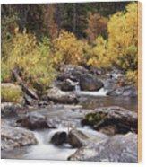 Fall In The Grand Tetons Wood Print