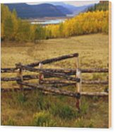 Fall In The Rockies 2 Wood Print