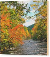 Fall In The Smokey Mountains  Wood Print