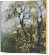 Fall In The Sumacs Wood Print