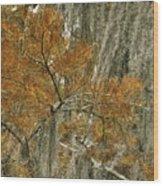 Fall In The Swamp Wood Print