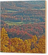 Fall In The Valley Wood Print