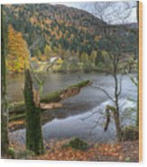Fall In Vosges National Park Wood Print
